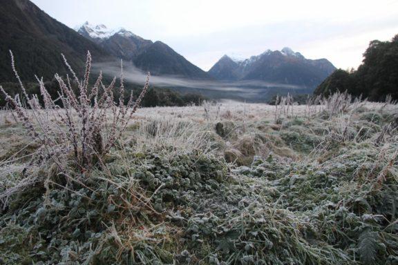 Frosty morning landscape along Milford Road